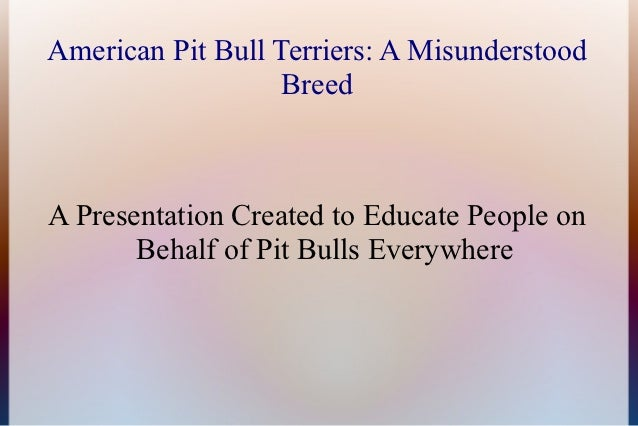 American Pit Bull Terriers: A Misunderstood                   BreedA Presentation Created to Educate People on       Behal...