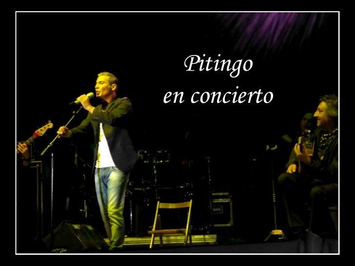 Pitingoen concierto