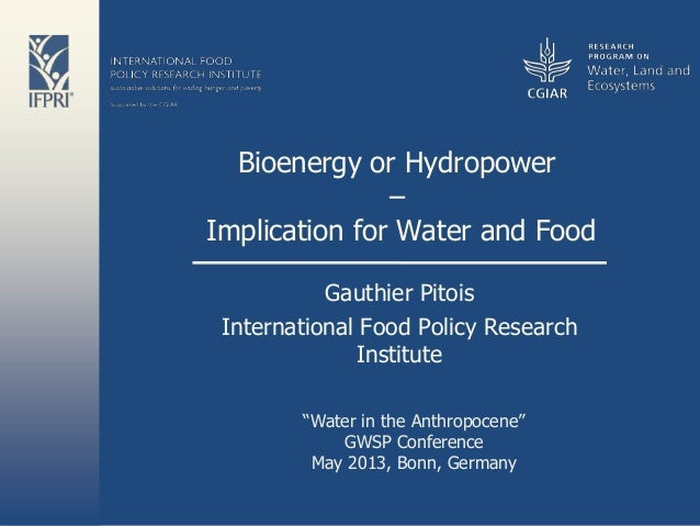 Bioenergy or Hydropower: Implication for Water and Food