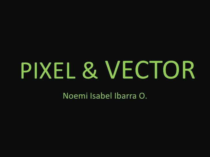 PIXEL & VECTOR<br />Noemi Isabel Ibarra O.<br />