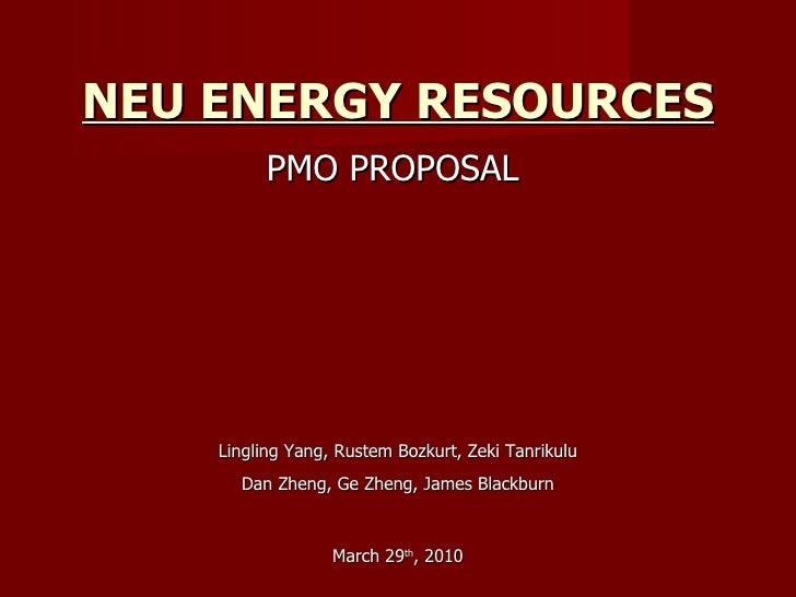 NEU ENERGY RESOURCES PMO PROPOSAL  March 29 th , 2010 Lingling Yang, Rustem Bozkurt, Zeki Tanrikulu Dan Zheng, Ge Zheng, J...
