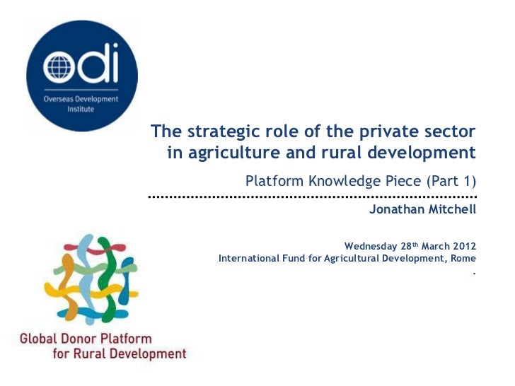The strategic role of the private sector in agriculture and rural development (Part 1)