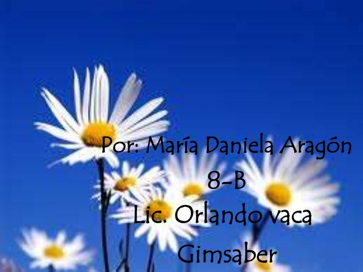 Por: María Daniela Aragón <br />8-B<br />Lic. Orlando vaca<br />Gimsaber<br />