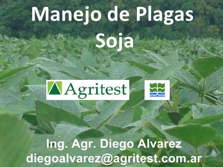 Monitoreo de plagas 30/08/2010 – Junín - BsAs  Diego Alvarez: 02477-15456116  [email_address] Manejo de Plagas Soja Ing. A...