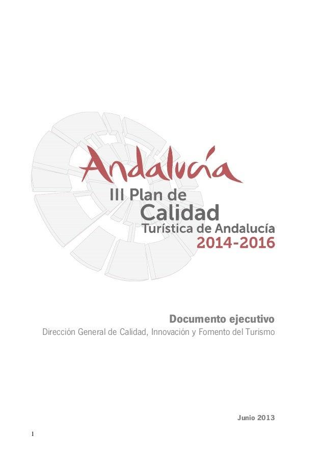 Documento ejecutivo Dirección General de Calidad, Innovación y Fomento del Turismo  Junio 2013 1