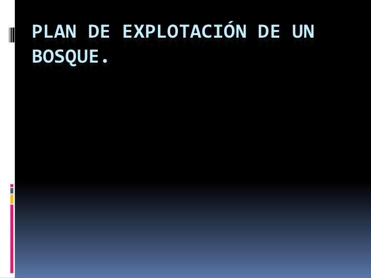 Plan de explotación de un bosque.<br />Eduardo Pérez del Molino Oria.<br />