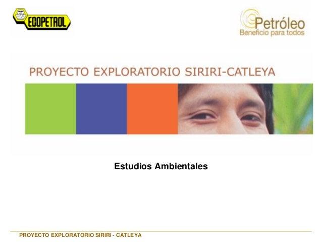 Estudios Ambientales PROYECTO EXPLORATORIO SIRIRI - CATLEYA