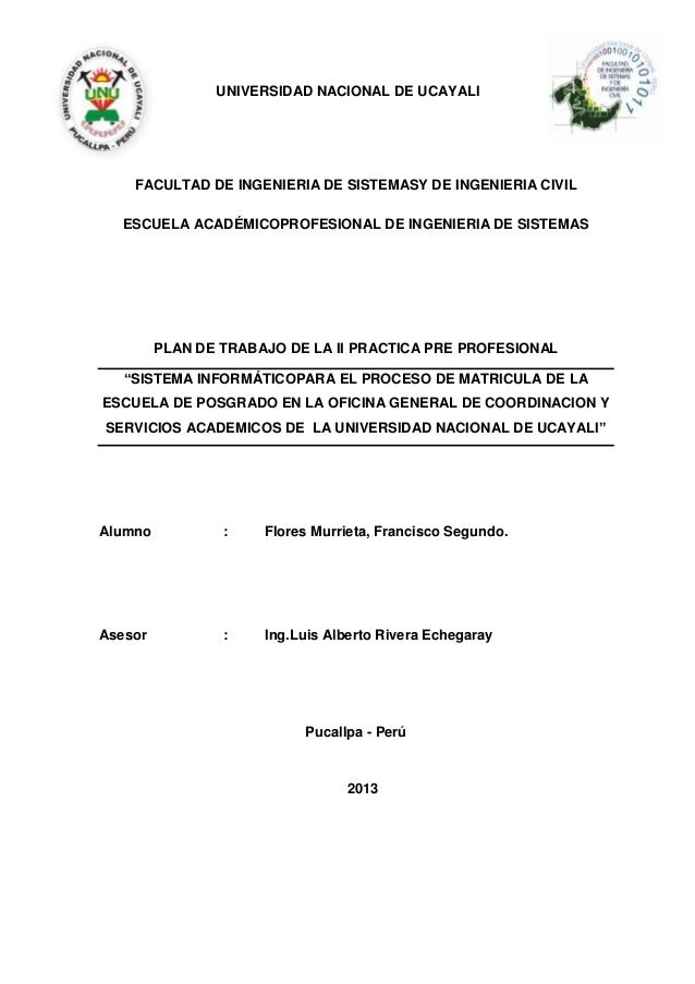 UNIVERSIDAD NACIONAL DE UCAYALI FACULTAD DE INGENIERIA DE SISTEMASY DE INGENIERIA CIVIL ESCUELA ACADÉMICOPROFESIONAL DE IN...