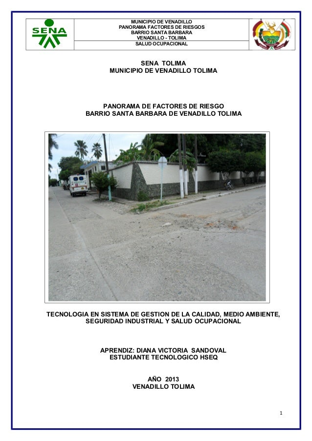 MUNICIPIO DE VENADILLO PANORAMA FACTORES DE RIESGOS BARRIO SANTA BARBARA VENADILLO - TOLIMA SALUD OCUPACIONAL  SENA TOLIMA...