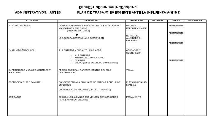 PLAN DE TRABAJO EMERGENTE ANTE LA INFLUENZA A(H1N1)
