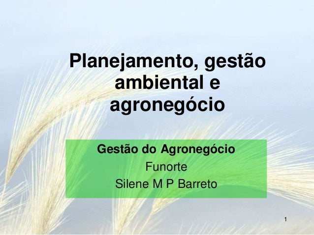 Planejamento, gestão    ambiental e    agronegócio  Gestão do Agronegócio         Funorte    Silene M P Barreto           ...
