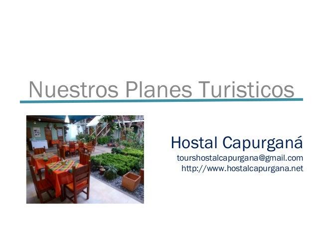 Hostal Capurganá tourshostalcapurgana@gmail.com http://www.hostalcapurgana.net Nuestros Planes Turisticos