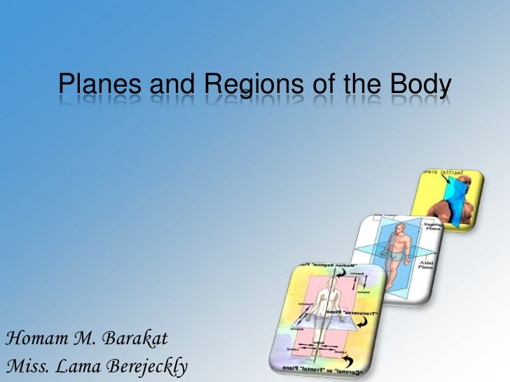 Planes and regions of the body