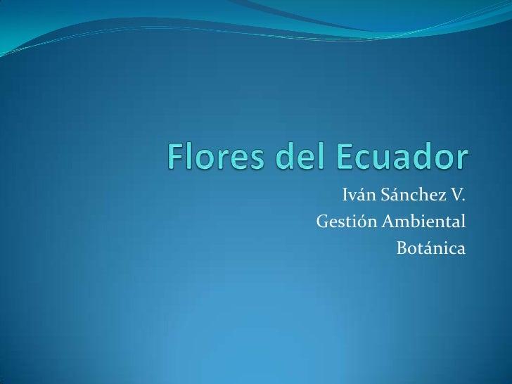 Flores del Ecuador<br />Iván Sánchez V.<br />Gestión Ambiental<br />Botánica<br />