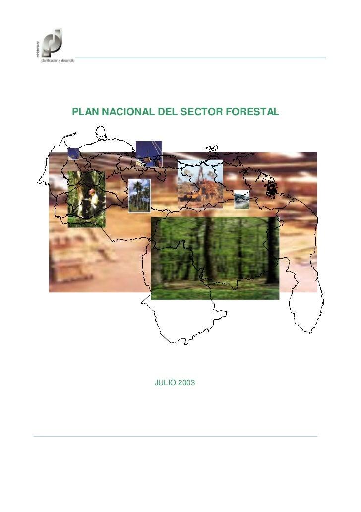 PLAN NACIONAL DEL SECTOR FORESTAL             JULIO 2003