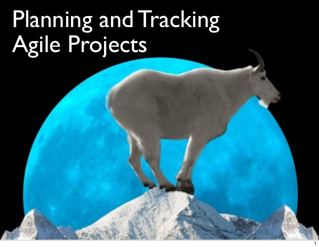 Planning and TrackingAgile Projects1