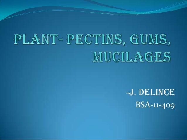 Plant mucilages,pectins,gums