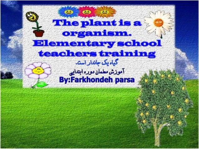 Plant organism-1