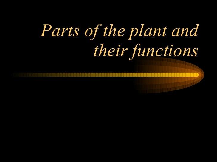 Plant Parts2