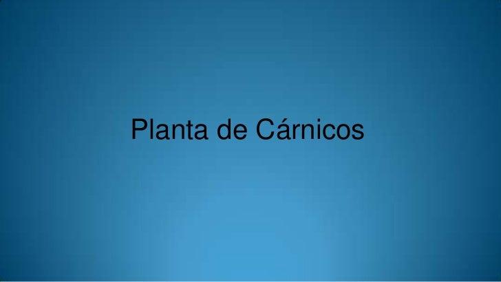 Planta de Cárnicos