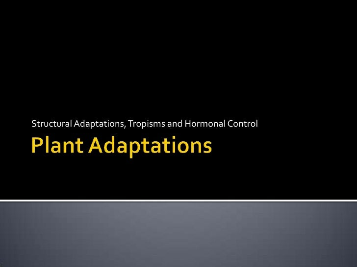 Structural Adaptations, Tropisms and Hormonal Control