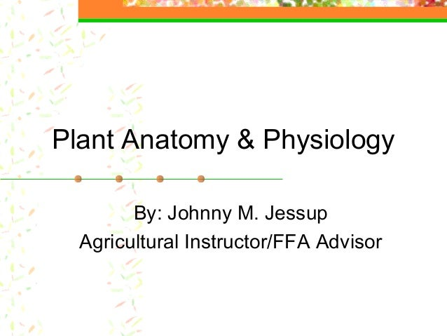 Plant Anatomy & Physiology By: Johnny M. Jessup Agricultural Instructor/FFA Advisor