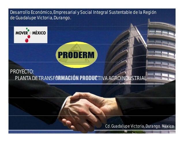 Desarrollo Económico, Empresarial y Social Integral Sustentable de la Región de Guadalupe Victoria, Durango. PROYECTO: PLA...