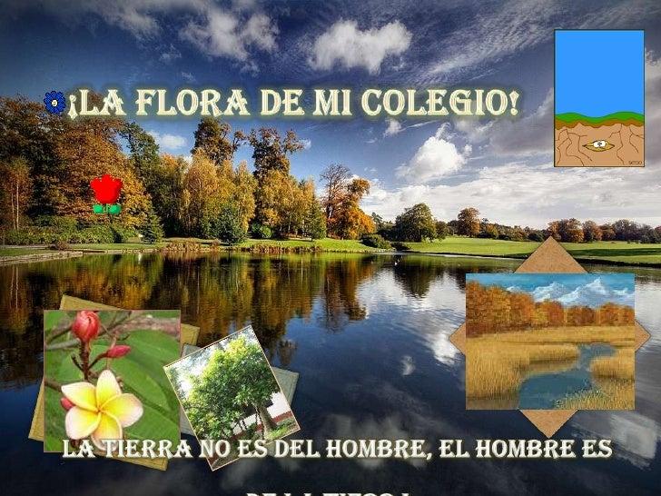 ¡LA FLORA DE MI COLEGIO! <br />La tierra no es del hombre, el hombre es de la tierra.<br />