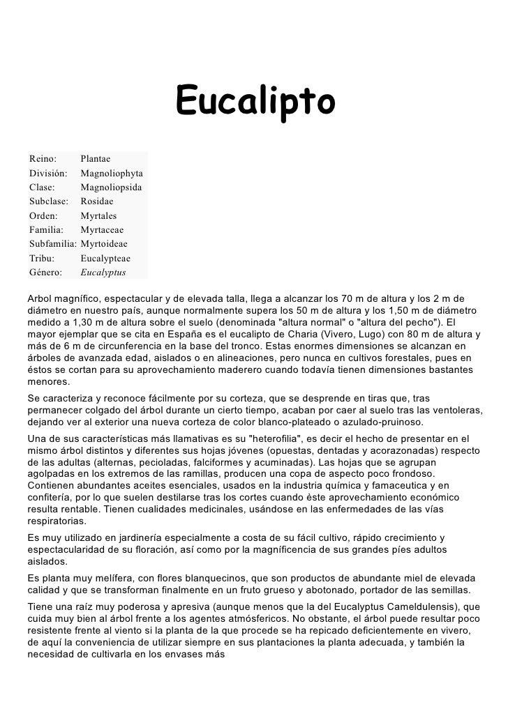EucaliptoReino:        PlantaeDivisión:     MagnoliophytaClase:        MagnoliopsidaSubclase:     RosidaeOrden:        Myr...