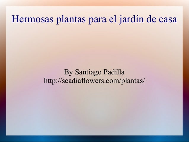 Hermosas plantas para el jardín de casa By Santiago Padilla http://scadiaflowers.com/plantas/