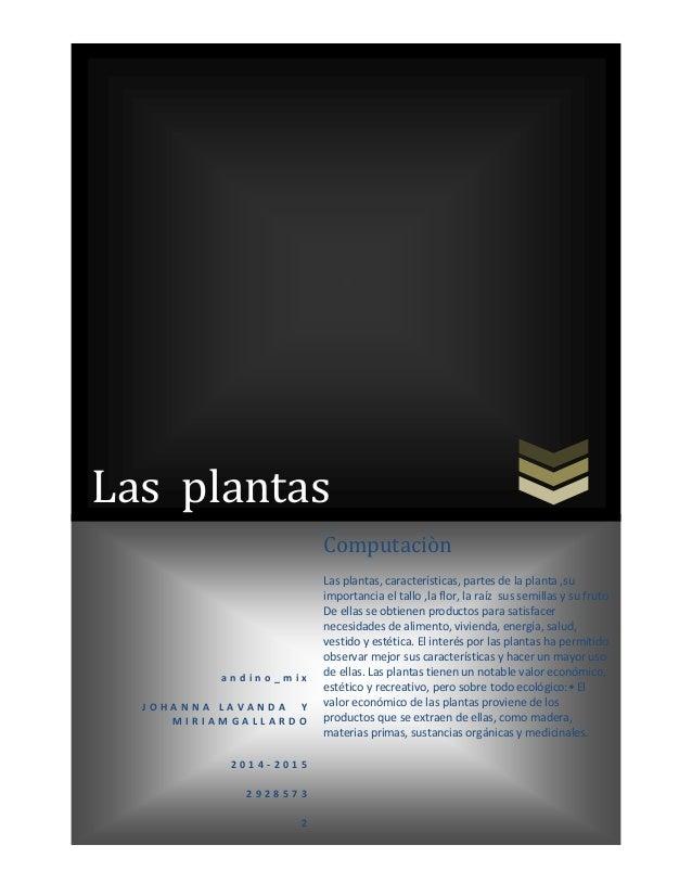 Las plantas a n d i n o _ m i x J O H A N N A L A V A N D A Y M I R I A M G A L L A R D O 2 0 1 4 - 2 0 1 5 2 9 2 8 5 7 3 ...