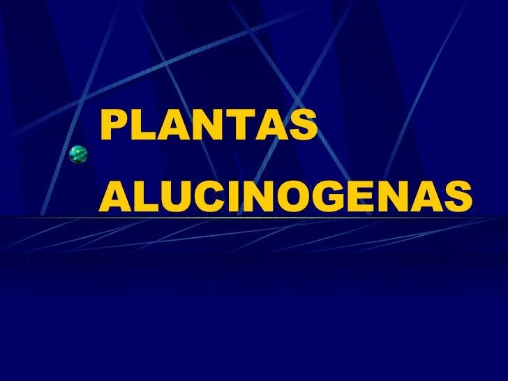 Plantas AlucinóGenas