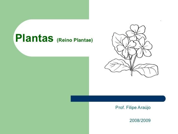Plantas  (Reino Plantae) Prof. Filipe Araújo 2008/2009