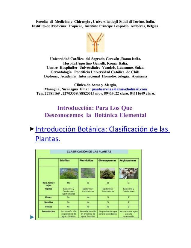 Plantas   anatomía  taxonomía,