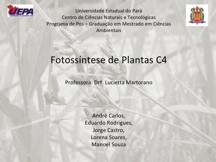 Universidade Estadual do Pará Centro de Ciências Naturais e Tecnológicas Programa de Pós – Graduação em Mestrado em Ciênci...