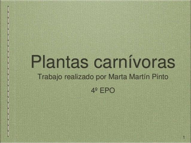 Plantas carnívoras Trabajo realizado por Marta Martín Pinto 4º EPO 1