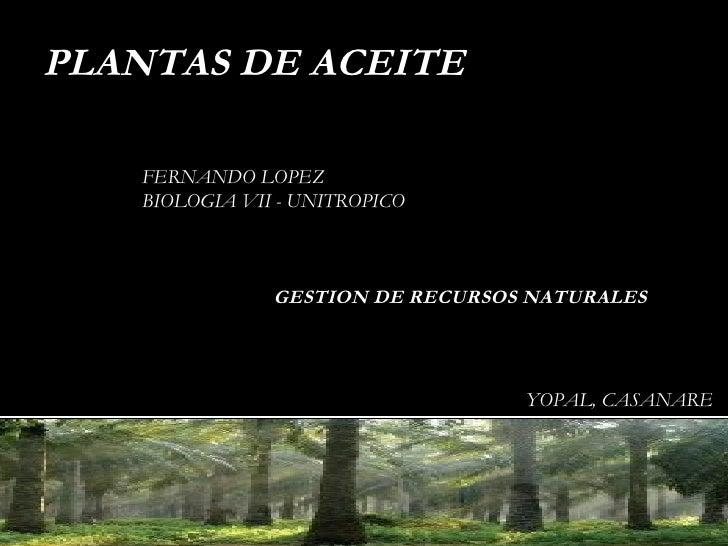 PLANTAS DE ACEITE FERNANDO LOPEZ BIOLOGIA VII - UNITROPICO YOPAL, CASANARE GESTION DE RECURSOS NATURALES