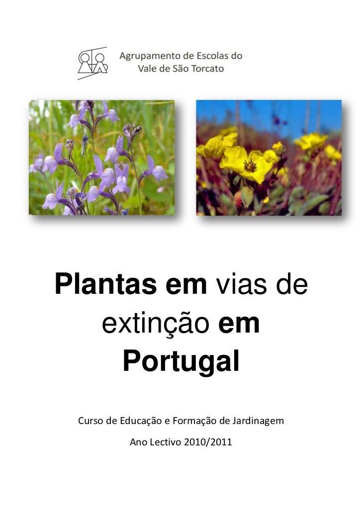 Agrupamento de Escolas do Vale de São Torcato <br />3016885255270-483016255665<br />Plantas em vias de extinção em Portuga...