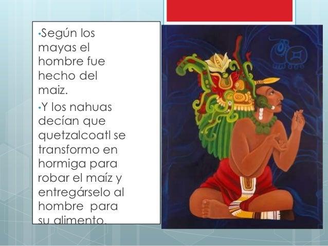 Ingredientes prehispanicos for Como se cocina el seitan