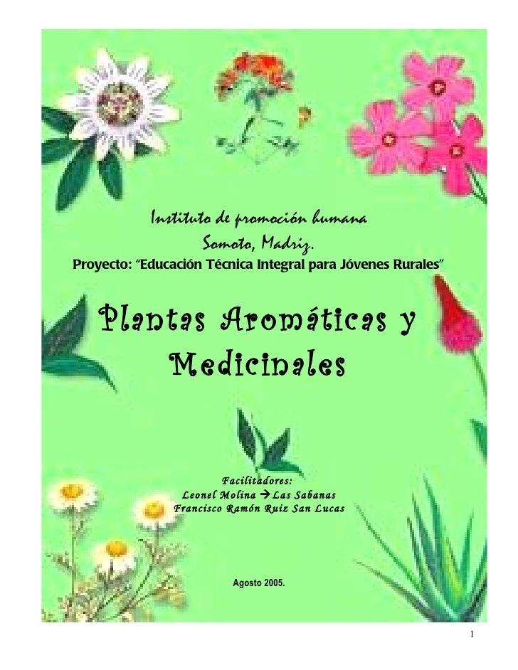 Plantas medicinales y sus principales caracteristicas.