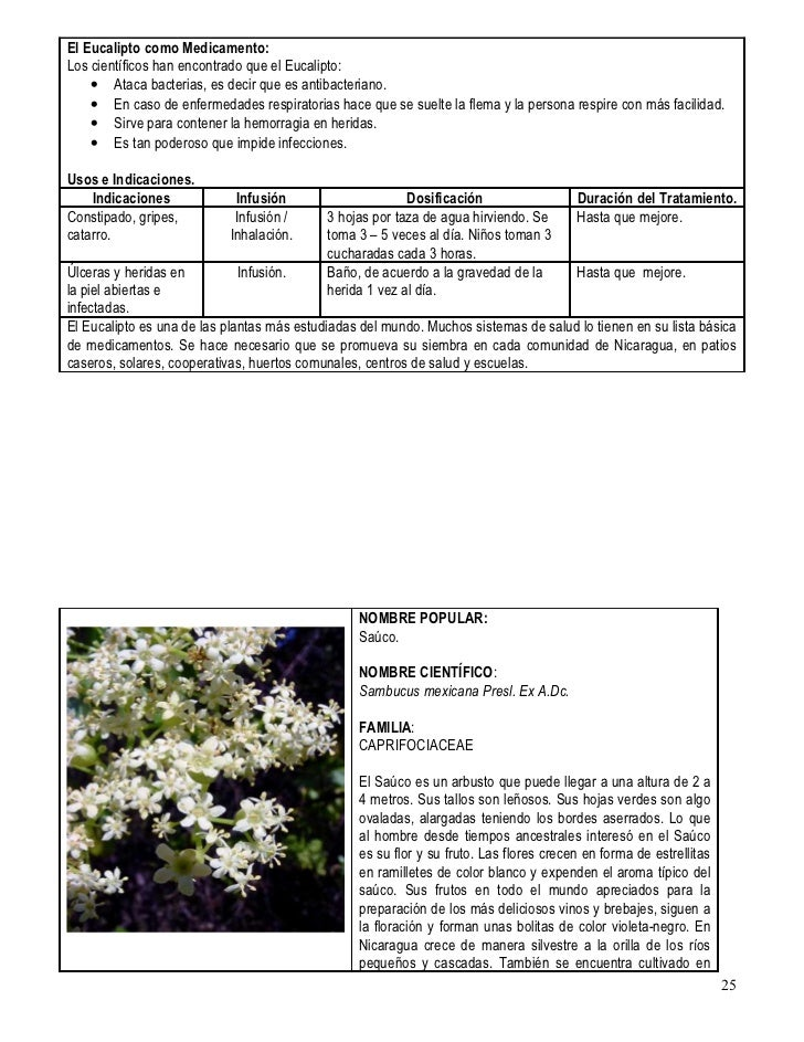 Baños Plantas Medicinales:Plantas medicinales