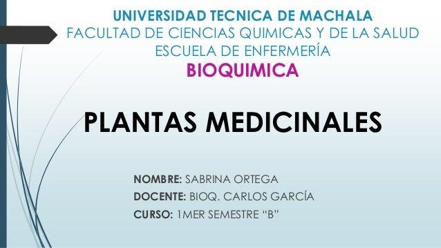 UNIVERSIDAD TECNICA DE MACHALA FACULTAD DE CIENCIAS QUIMICAS Y DE LA SALUD ESCUELA DE ENFERMERÍA  BIOQUIMICA  PLANTAS MEDI...