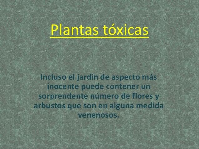 Plantas tóxicas Incluso el jardín de aspecto más inocente puede contener un sorprendente número de flores y arbustos que s...