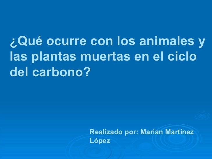 ¿Qué ocurre con los animales y las plantas muertas en el ciclo del carbono? Realizado por: Marian Martínez López