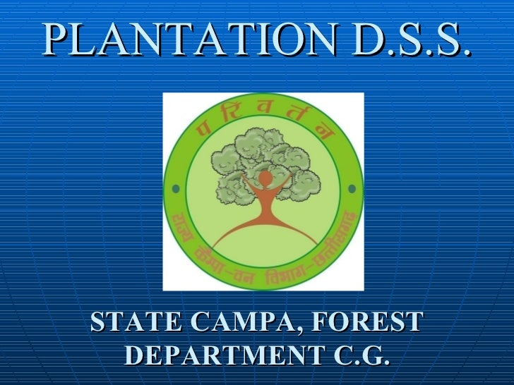PLANTATION D.S.S. STATE CAMPA, FOREST DEPARTMENT C.G.