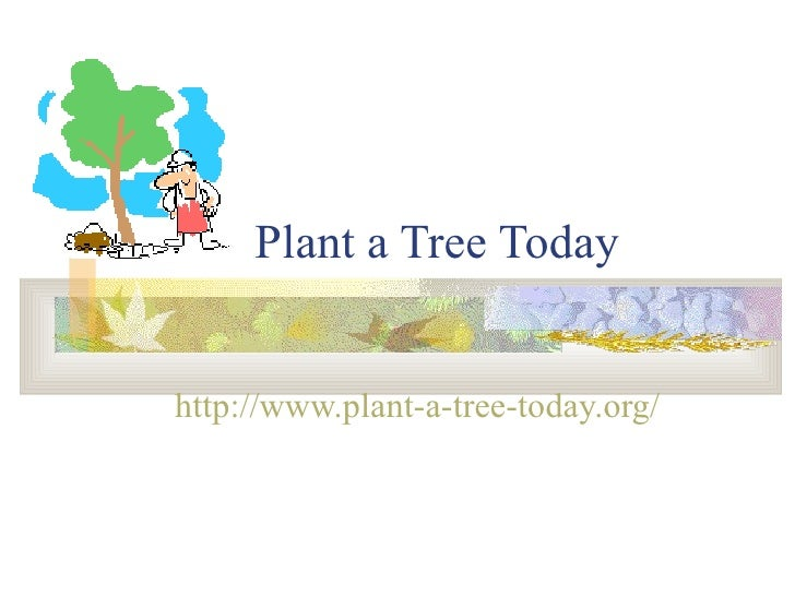 Plant a Tree Today http://www.plant-a-tree-today.org/