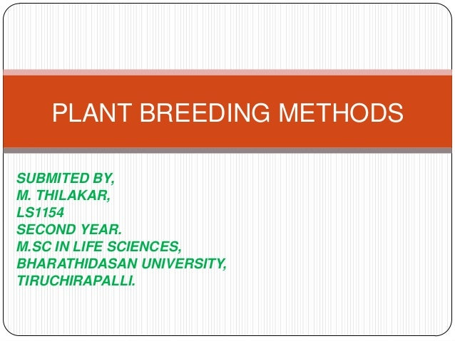 PLANT BREEDING METHODSSUBMITED BY,M. THILAKAR,LS1154SECOND YEAR.M.SC IN LIFE SCIENCES,BHARATHIDASAN UNIVERSITY,TIRUCHIRAPA...