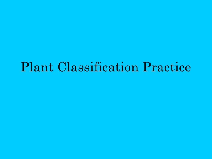 Plant Classification Practice