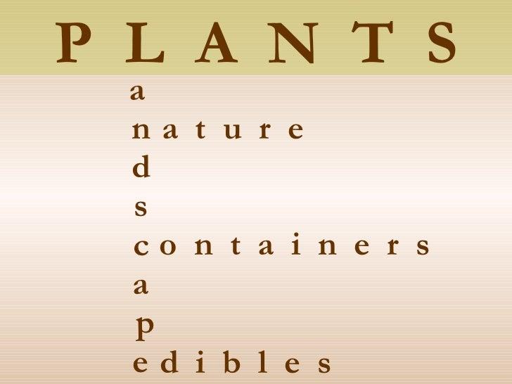 Plant Combinations Sampler