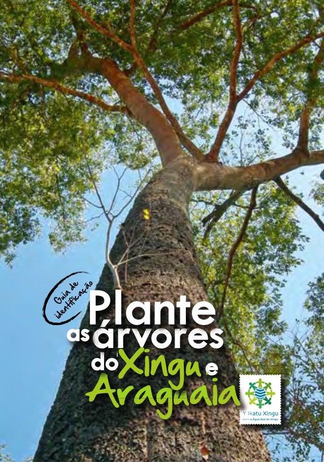 G uia de identificação eeeee AraguaiaAraguaia dododo árvoresárvoresárvoresas eeee AraguaiaAraguaia e Araguaia ee Araguaia ...